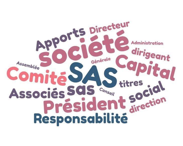 Rôle et utilisation du capital social